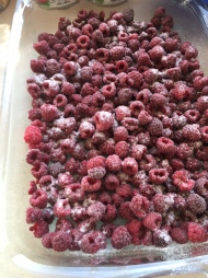 Frozen raspberries from our summer harvest